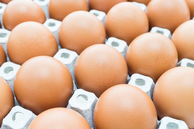 Eieren. Gratis Foto