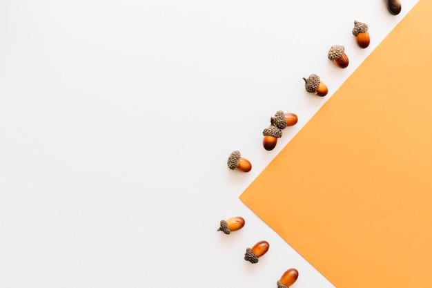 Eikels die zijn ontworpen op basis van een oranje papierrandkader op een wit oppervlak Gratis Foto