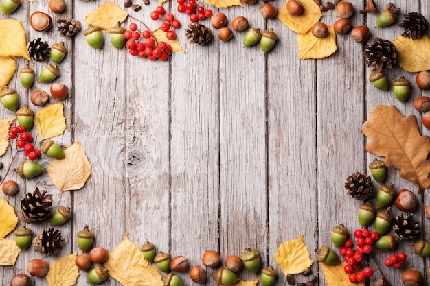 Eikels, geel blad, noten en korrels op sjofele houten achtergrond, exemplaarruimte Premium Foto