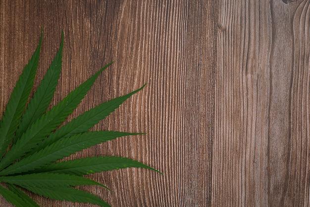 Enorm veel marihuanabladeren. Gratis Foto