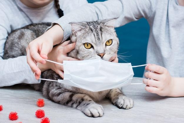 Epidemie covid-19. kinderen proberen een kat een medisch masker op te zetten ter bescherming tegen coronavirus. veterinaire bescherming. Premium Foto