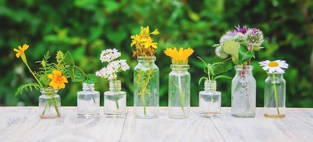 Extracten van kruiden in kleine flesjes. selectieve aandacht. Premium Foto