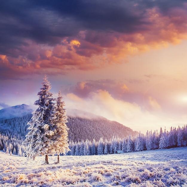 Fabulous winterlandschap in de bergen. Premium Foto