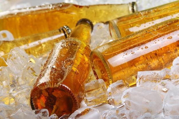 Flessen bier liggen in het ijs Gratis Foto