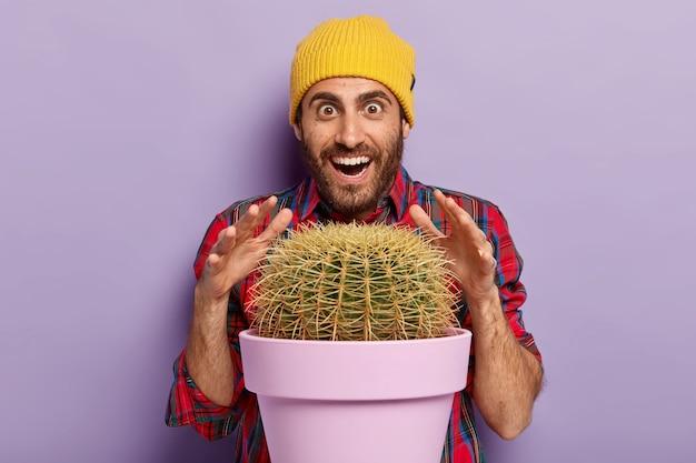 Foto van verbaasde ongeschoren man probeert cactus aan te raken met scherpe doornen, lacht vrolijk, draagt gele hoed en vlecht shirt, heeft een vrolijke grappige gezichtsuitdrukking, poseert tegen een paarse muur. wauw, welke plant! Gratis Foto