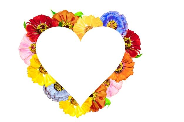Frame in de vorm van een hart gemaakt van zinnia bloemen op een witte achtergrond. valentijnsdag. Premium Foto