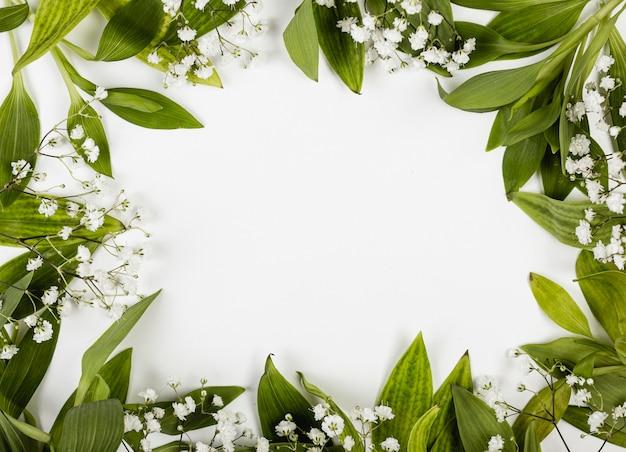 Frame van bladeren en kleine witte bloemen Gratis Foto