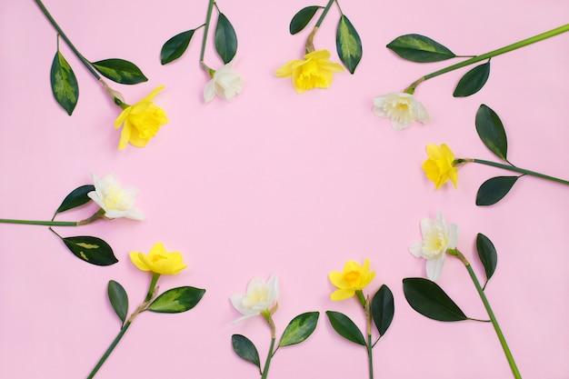 Frame van narcissen of narcissen bloemen Premium Foto