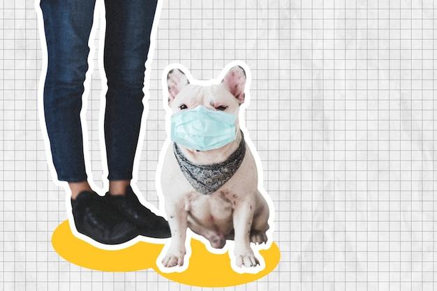 Franse bulldog in gezichtsmasker sociale afstand nemen met mixed media collage-ontwerpruimte Gratis Foto