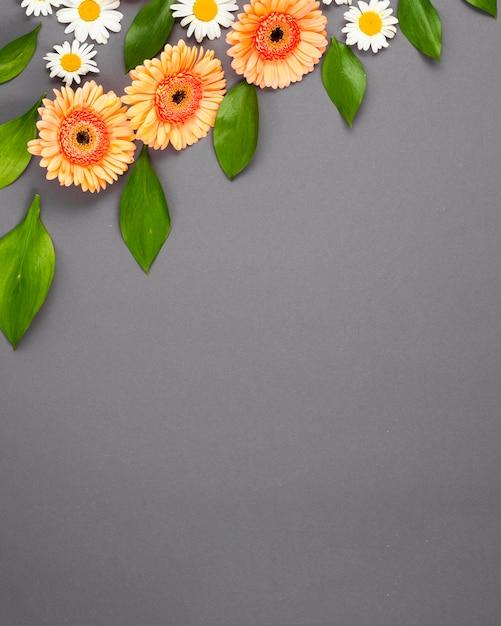 Geassorteerde bloemen diagonaal opgemaakt Gratis Foto
