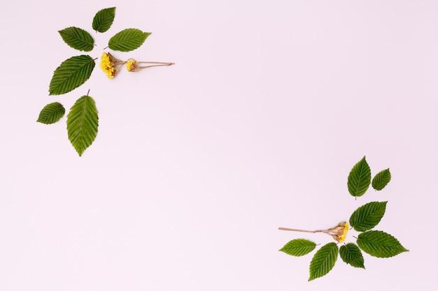 Gebladerteontwerp met bloemen en bladeren Gratis Foto