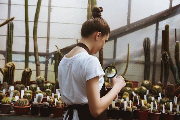 Geconcentreerde jonge vrouw die zich in serre dichtbij installaties bevindt Gratis Foto