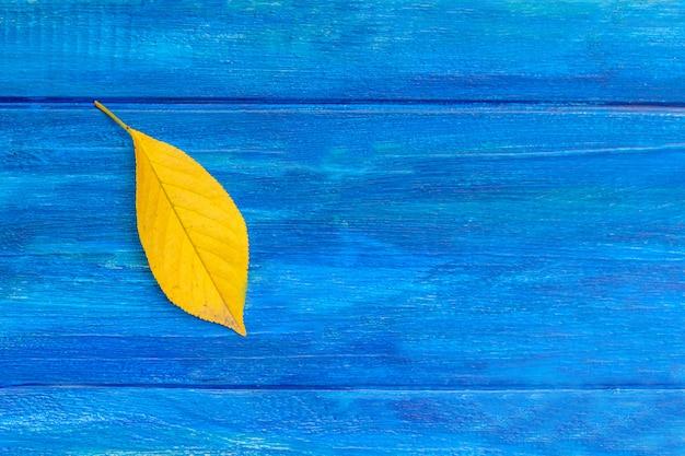 Geel blad op blauwe achtergrond. herfst concept. Premium Foto