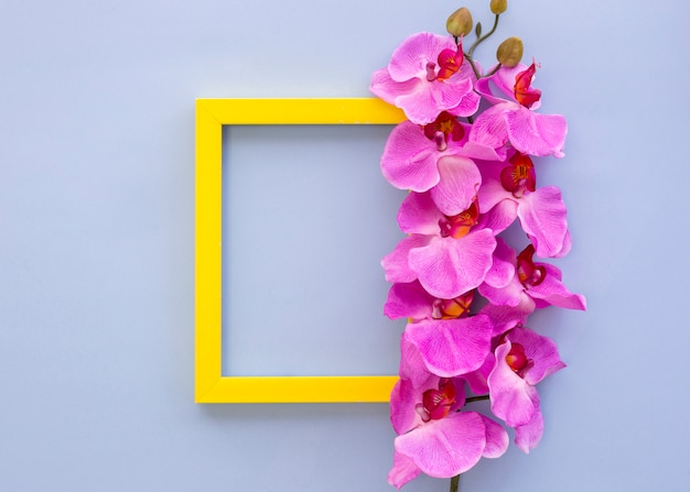 Geel leeg leeg frame dat met roze orchideebloemen wordt verfraaid Gratis Foto