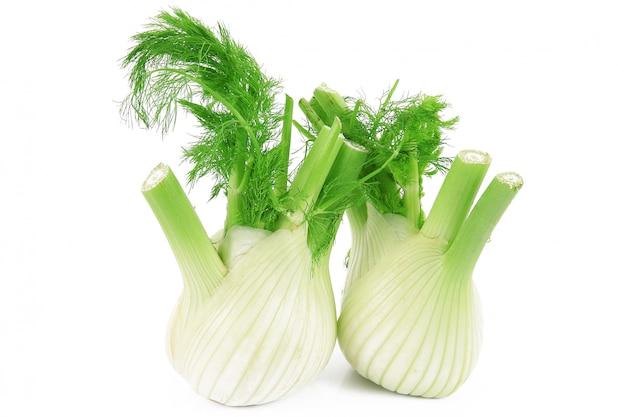 Geïsoleerde fennels Premium Foto