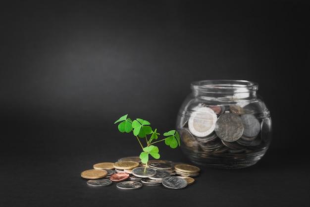 Geld en spruit groeit op glazen spaarvarken Premium Foto