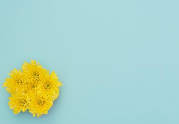 Gele bloemen op blauw Premium Foto