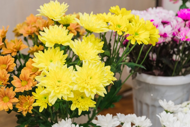 Gele chrysantenbloemen in de emmer Gratis Foto