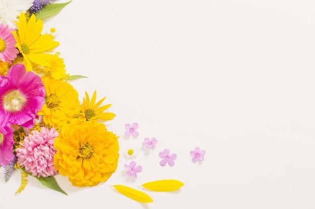 Gele en roze bloemen op witte muur Premium Foto