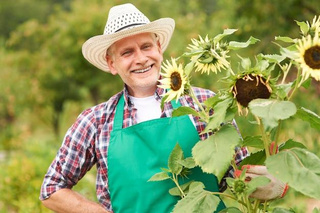 Gelukkig volwassen man met zonnebloem in de tuin Gratis Foto