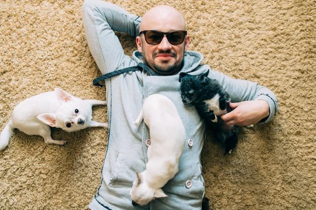 Gelukkige gebaarde kale mens in zonnebril die thuis op tapijt met drie kleine chihuahua-puppy liggen. Premium Foto