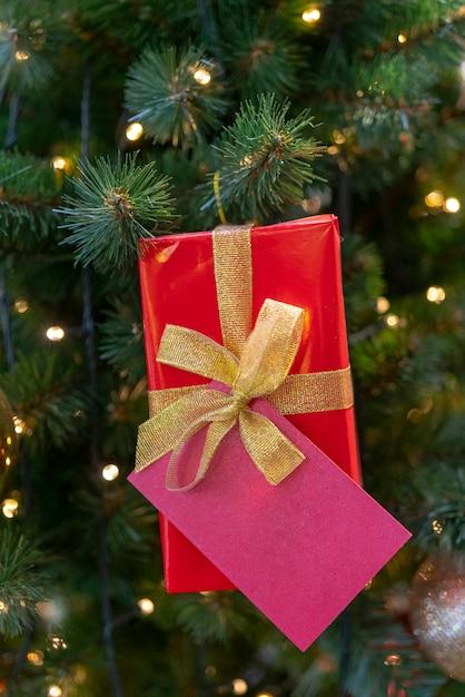 Geschenkdoos voor kerstspar. plaats voor inschrijving. Premium Foto