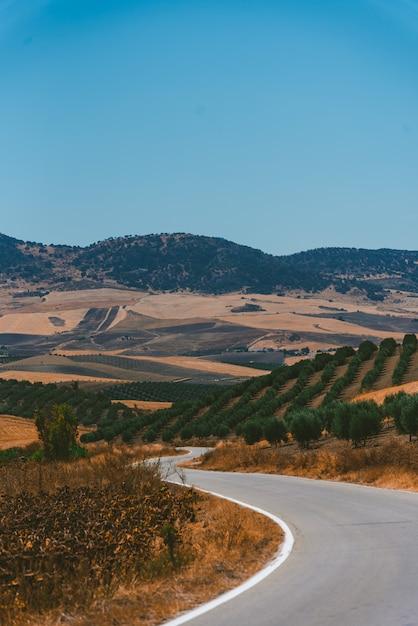 Geweldig shot van een snelweg omringd door planten in alentejo portugal op een warme dag Gratis Foto