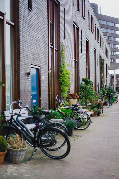 Gezellige binnenplaatsen van amsterdam, banken, fietsen, bloemen in kuipen. Gratis Foto
