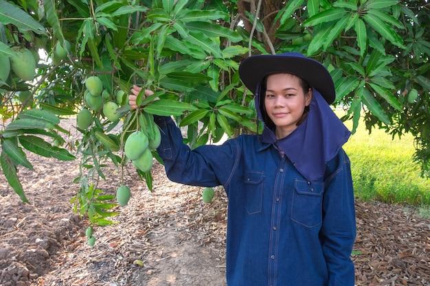 Glimlach jonge aziatische landbouwersvrouw het plukken mangofruit in landbouwbedrijf Premium Foto