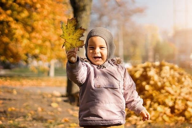 Glimlachend kind met bos van gele esdoornbladeren in de herfstpark Premium Foto
