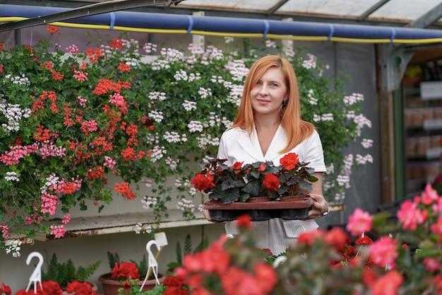 Glimlachende gelukkige bloemist in haar kwekerij staande met een ingemaakte rode geraniums in haar handen terwijl ze de tuinplanten in de kas neigt Gratis Foto