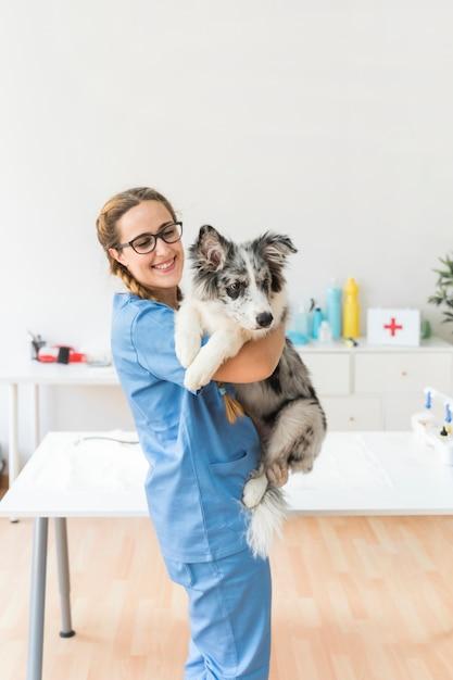 Glimlachende jonge vrouwelijke dierenarts die de hond in kliniek vervoeren Gratis Foto