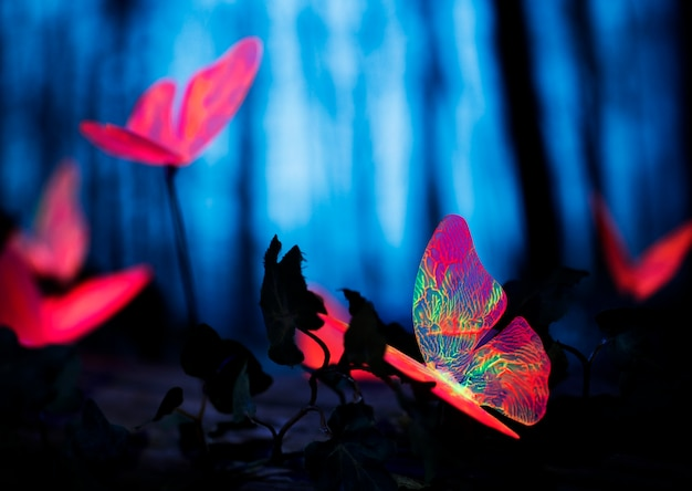 Gloeiende insecten in het nachtbos Gratis Foto