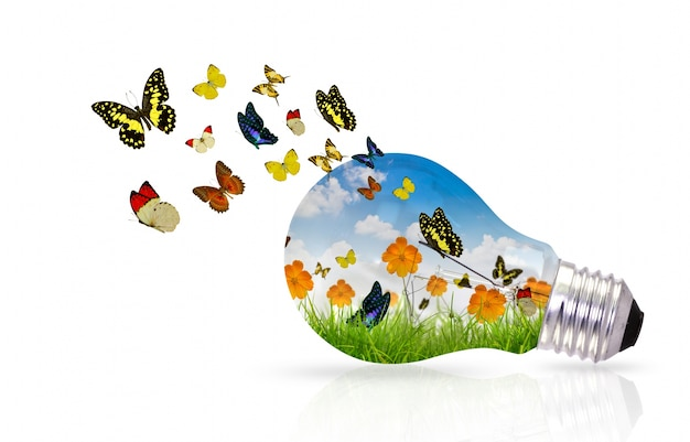 Gloeilamp met kleurrijke vlinders Gratis Foto