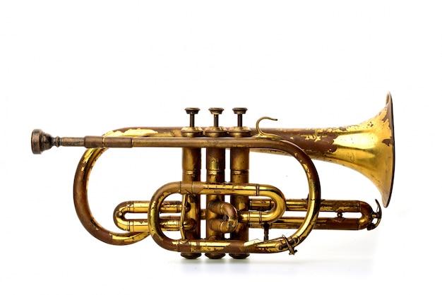 Golden trumpet Gratis Foto