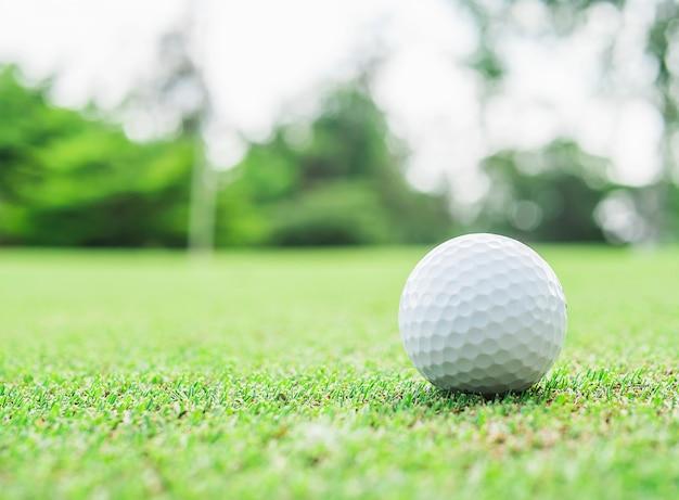 Golfbal op groen met vage speldvlagnoot en groene boomachtergrond Gratis Foto