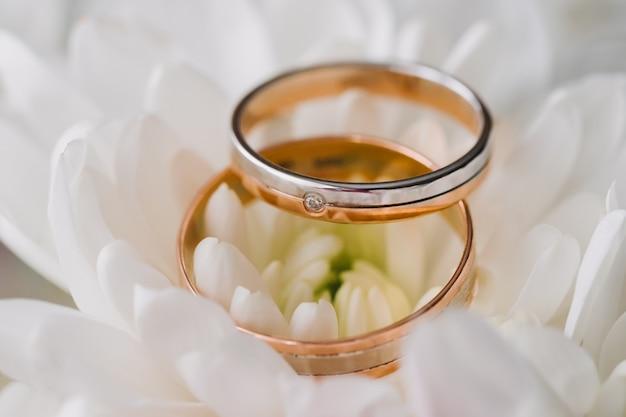 Gouden ringen voor bruiloft op zacht licht Premium Foto