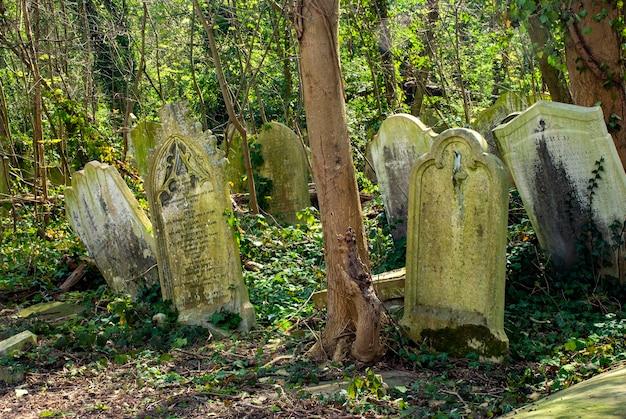 Grafstenen op de begraafplaats van nunhead in londen in engeland overdag Gratis Foto