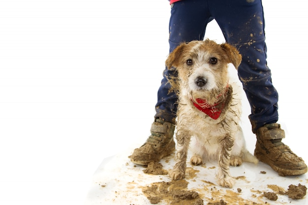 Grappige vuile hond en kind. puppy en jongen dragen laarzen na het spelen in een modderpoel. Premium Foto