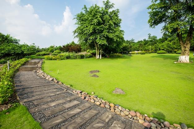 Grasland landschap en greening milieu park achtergrond Gratis Foto