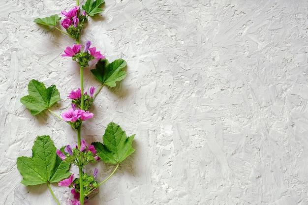 Grens van tak met paarse bloemen en groene bladeren op grijze stenen achtergrond met kopie ruimte voor tekst. Premium Foto