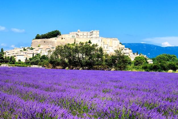 Grignan met lavendelveld, departement drome, rhone-alpes, frankrijk Gratis Foto