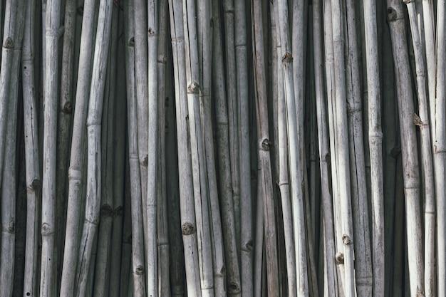 Grijze droge bamboe die verticaal is gerangschikt. Gratis Foto