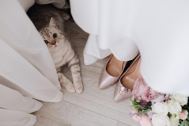 Grijze kat in de buurt van gordijnen, trouwringen, boeket en schoenen op de vloer Gratis Foto