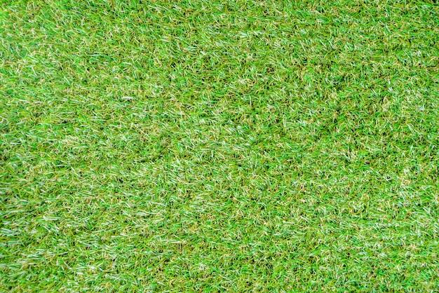 Groen gras zomer achtergrond Premium Foto