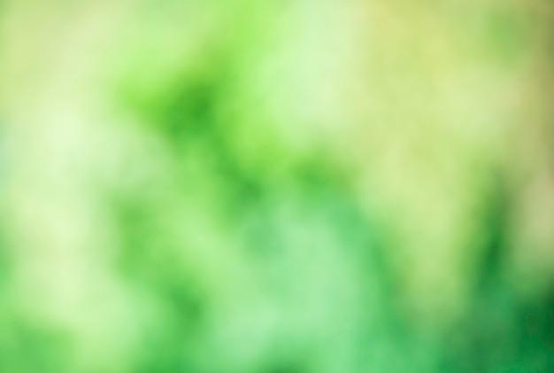 Groen vervagen bokeh op de abstracte achtergrond. Premium Foto