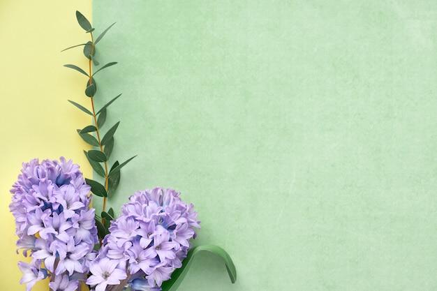 Groen, violet en geel frame versierd met blauwe hyacintbloemen en eucalyptusbladeren Premium Foto