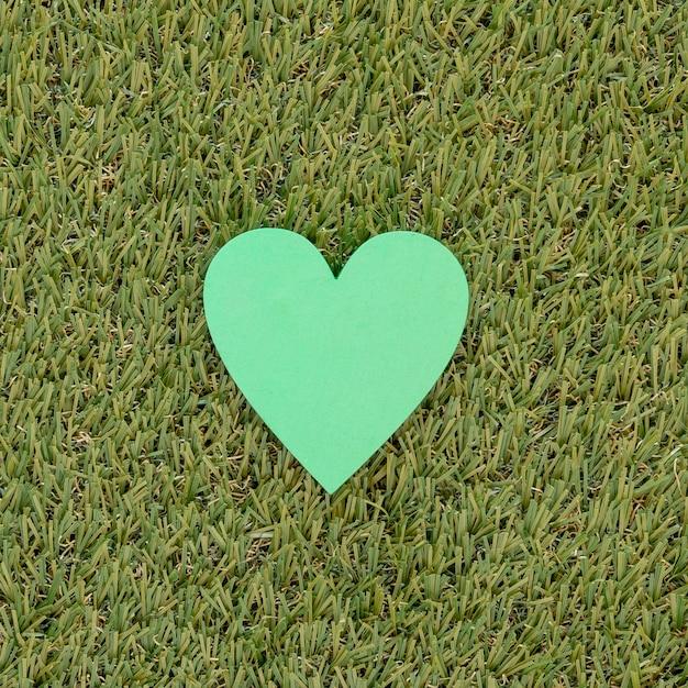Groenboekhart op gras Gratis Foto