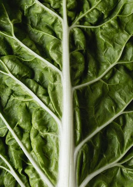 Groene biologische veggie voor salade Gratis Foto