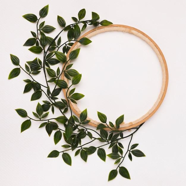 Groene bladeren die op houten cirkelkader tegen witte achtergrond worden verfraaid Gratis Foto